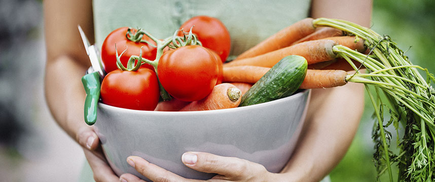 A person holding a bowl of vibrant vegetables